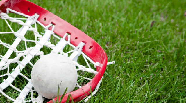Lacrosse stick and ball on grass